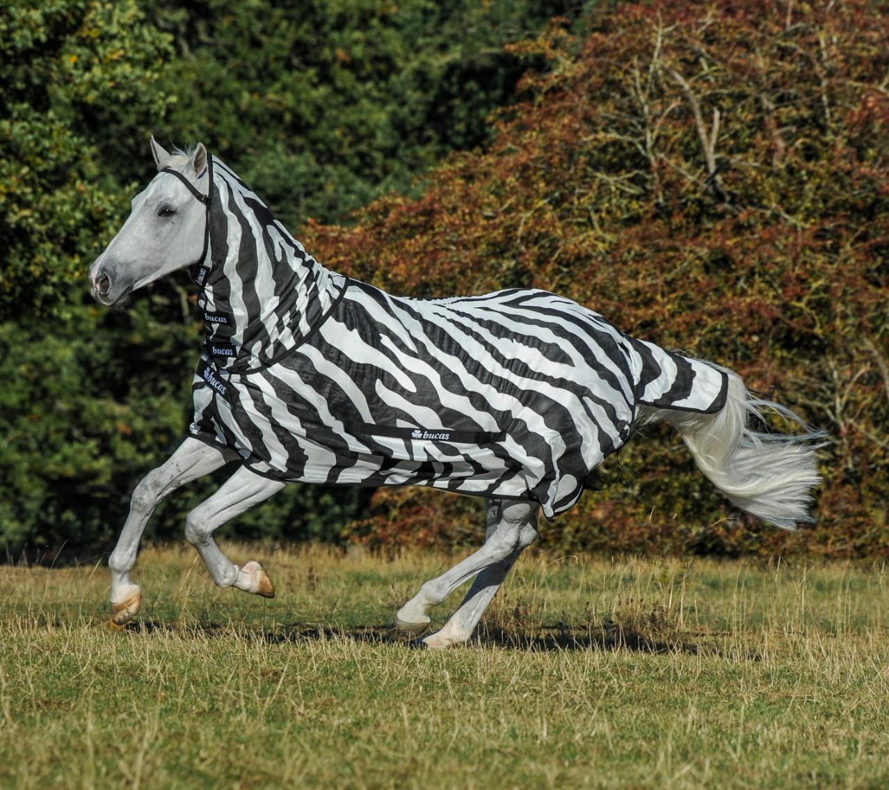 Bucas Buzz-Off Zebra Full Neck Fliegendecke