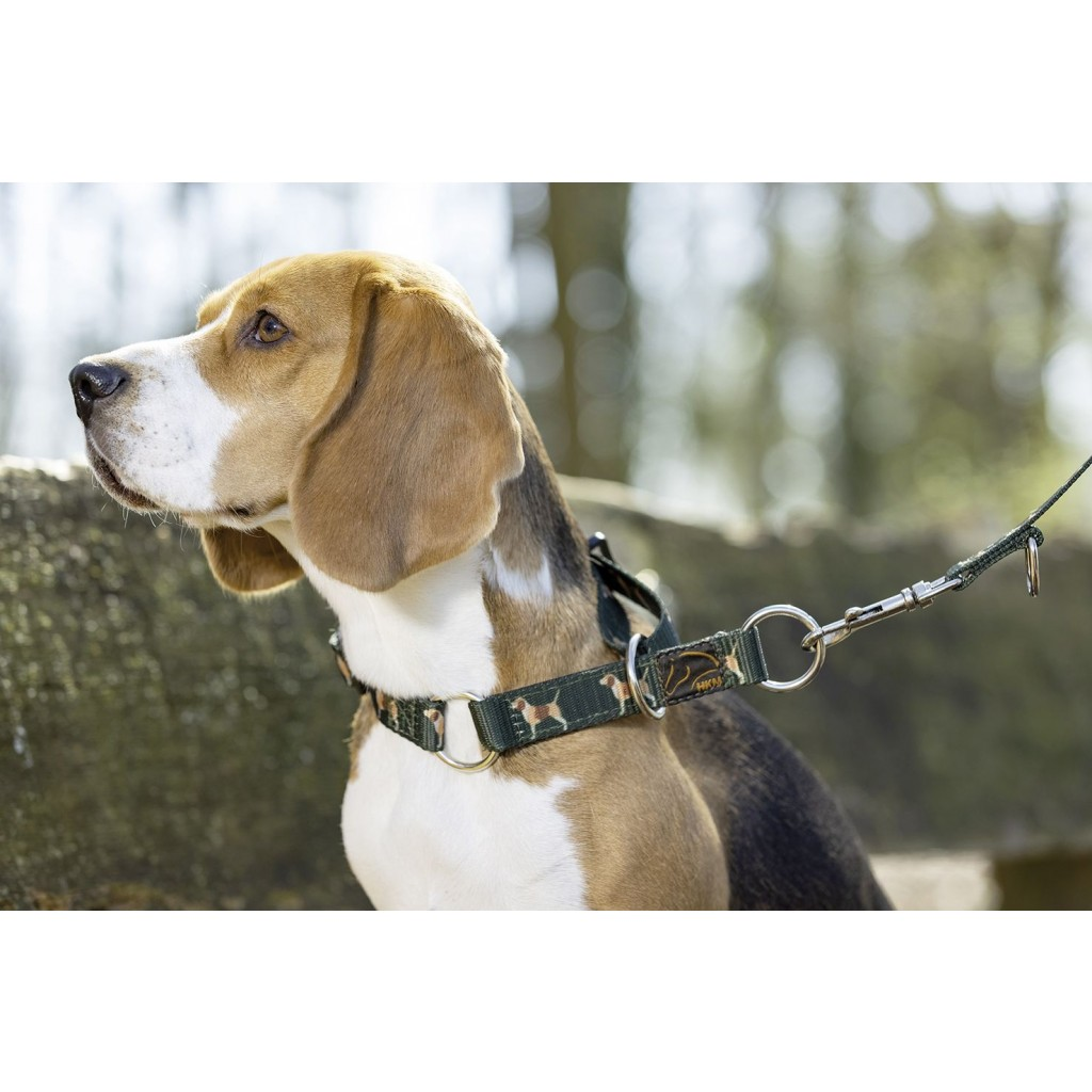 HKM Hunde- Halsband Beagle